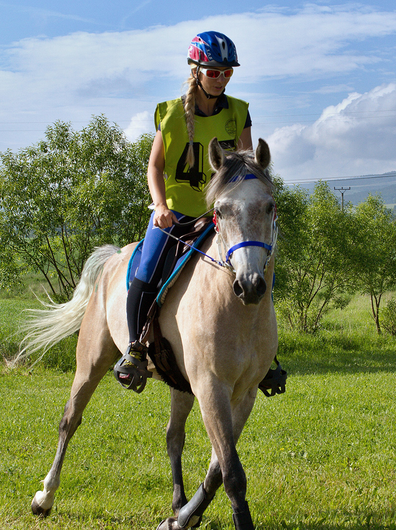 Preteky koní Kaľamenová 2016